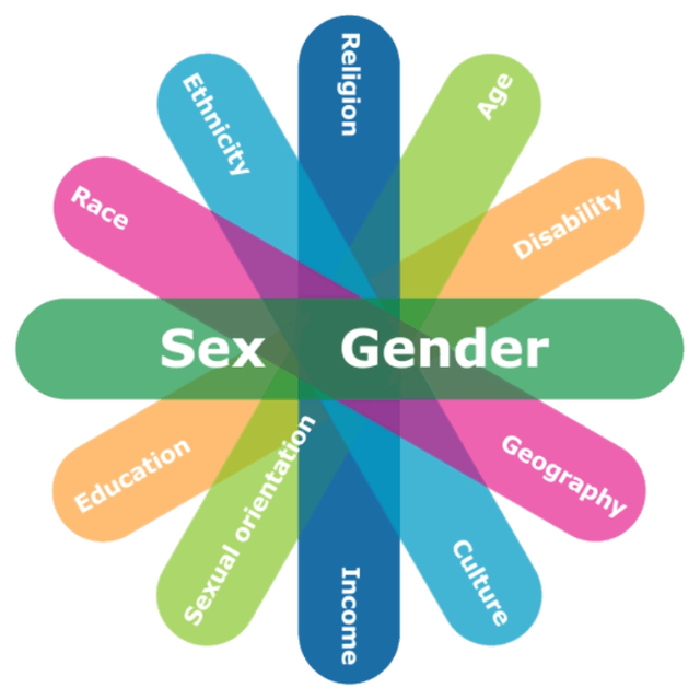 This 'identity factors' wheel shows all the different identities that must be considered by government workers in crafting policy (Status of Women Canada).